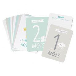 cartes-kit-bebe-zu-det-bd