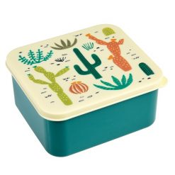 desert-in-bloom-lunch-box-27114